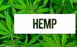 Farm acres and green houses for lease for growing hemp